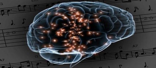 mozg cheloveka